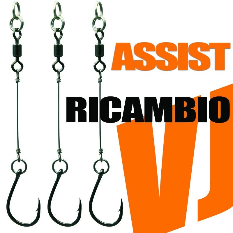 ASSIST RICAMBIO PER...