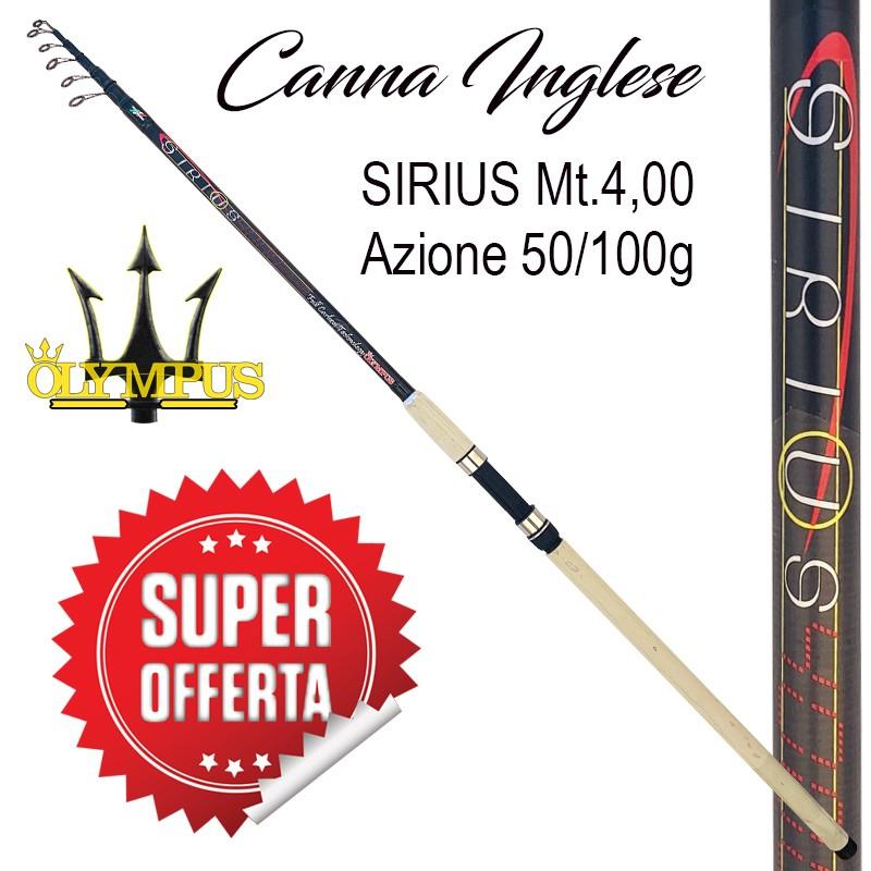 Canna Olympus SIRIUS